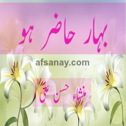 Bahar Hazir Ho Cover Photo