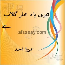 Teri Yaad Khare Gulab Hay